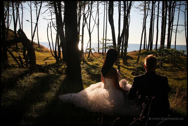 zdjęcia ślubne orzechowo