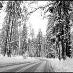 Zimowe krajobrazy | Kaszuby w śniegu | Plener fotograficzny