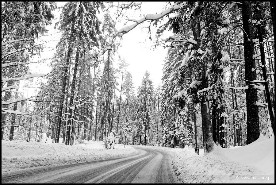 zimowe pejzaże zdjęcia fotografie