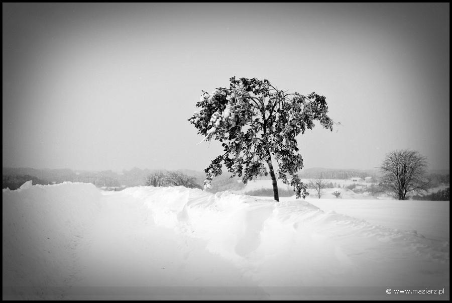 zimowe krajobrazy czarno białe