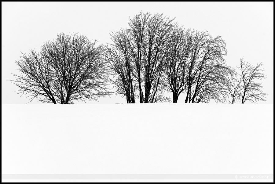 zima na Kaszubach zdjęcia